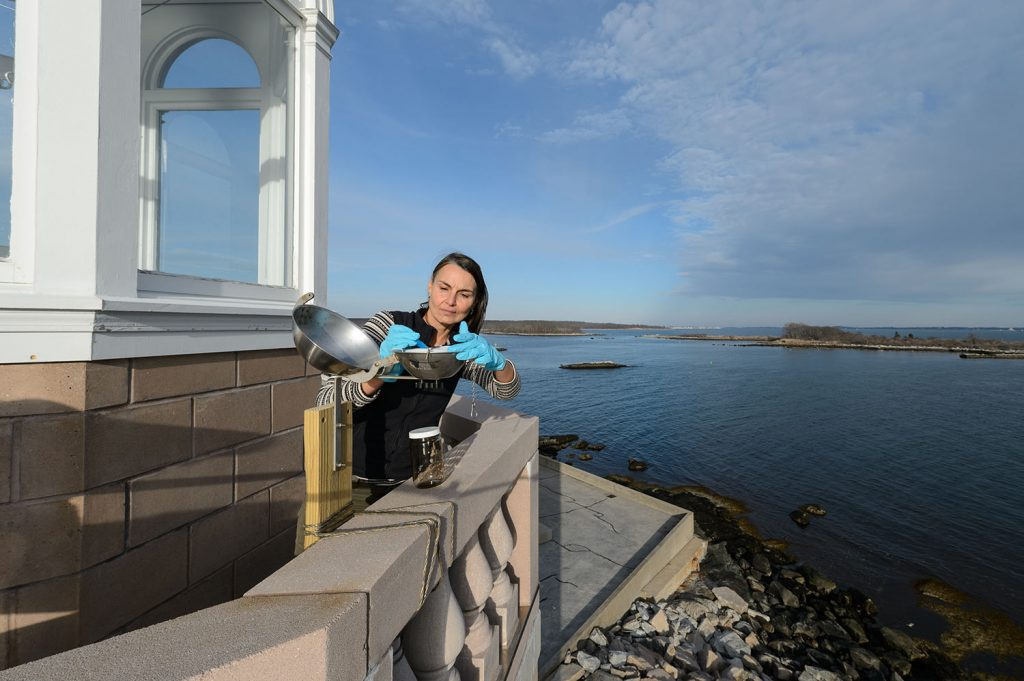 Penny Vlahos replaces a seasonal cartridge on an air sampling device attached to the Avery Point Lighthouse
