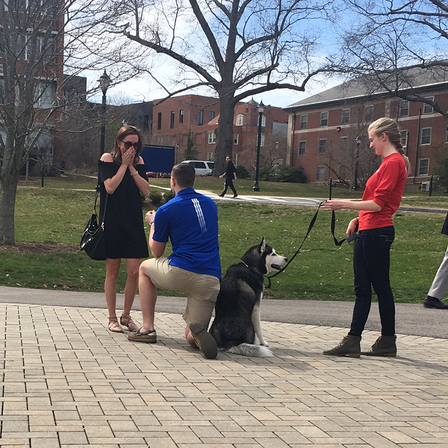 Daniel Bronko '15 (ED) recruited Jonathan XIV to help with his marriage proposal to Holly Korona '13 (ED) '14 MA.