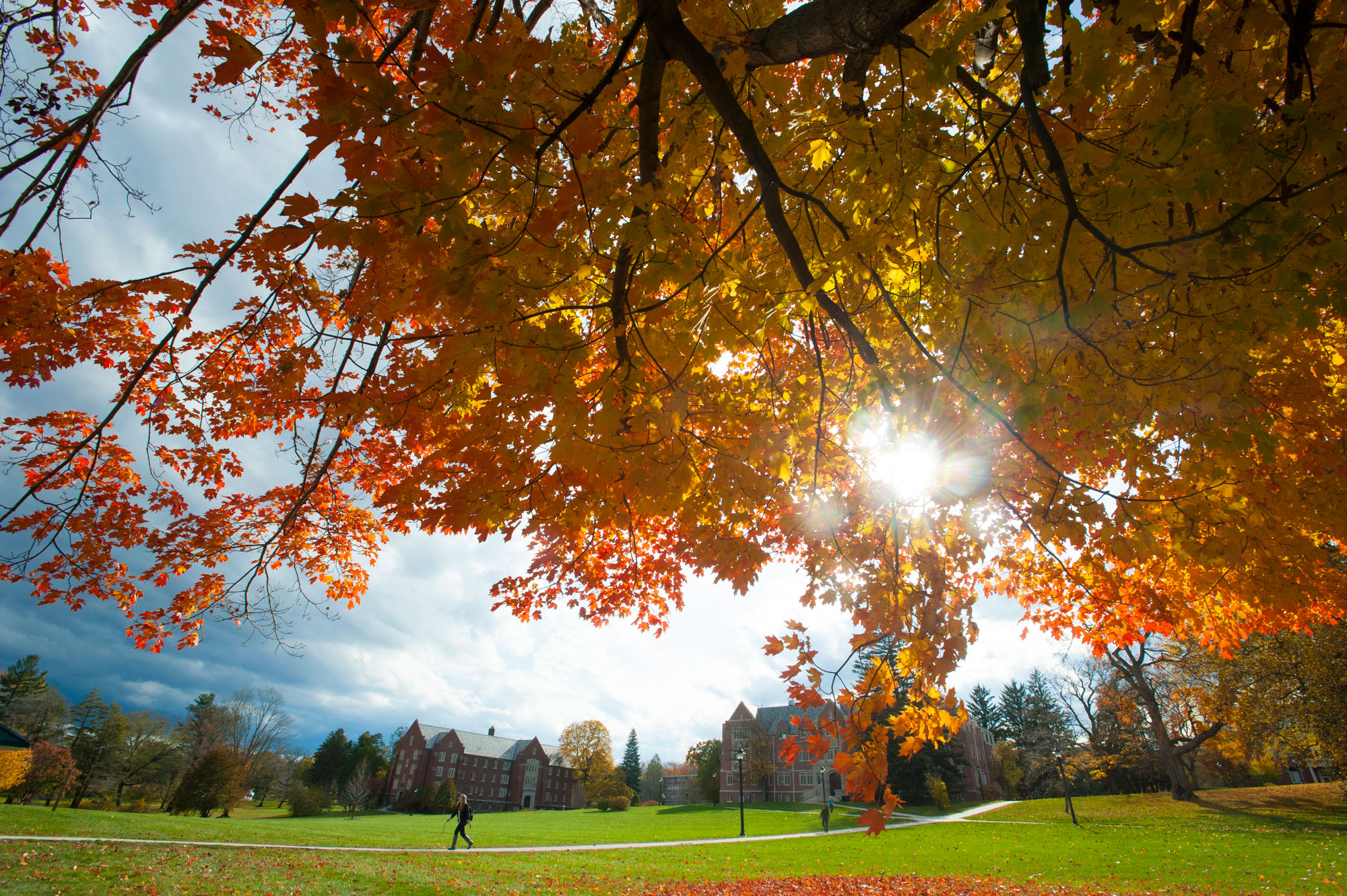 UConn Storrs campus in the fall