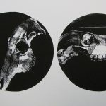 Print image of x-ray in two circles