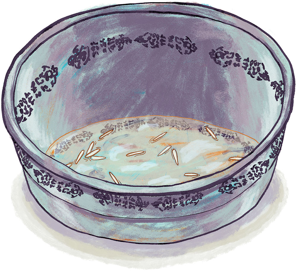 illustration of worn tin bowl with bits of white rica at the bottom