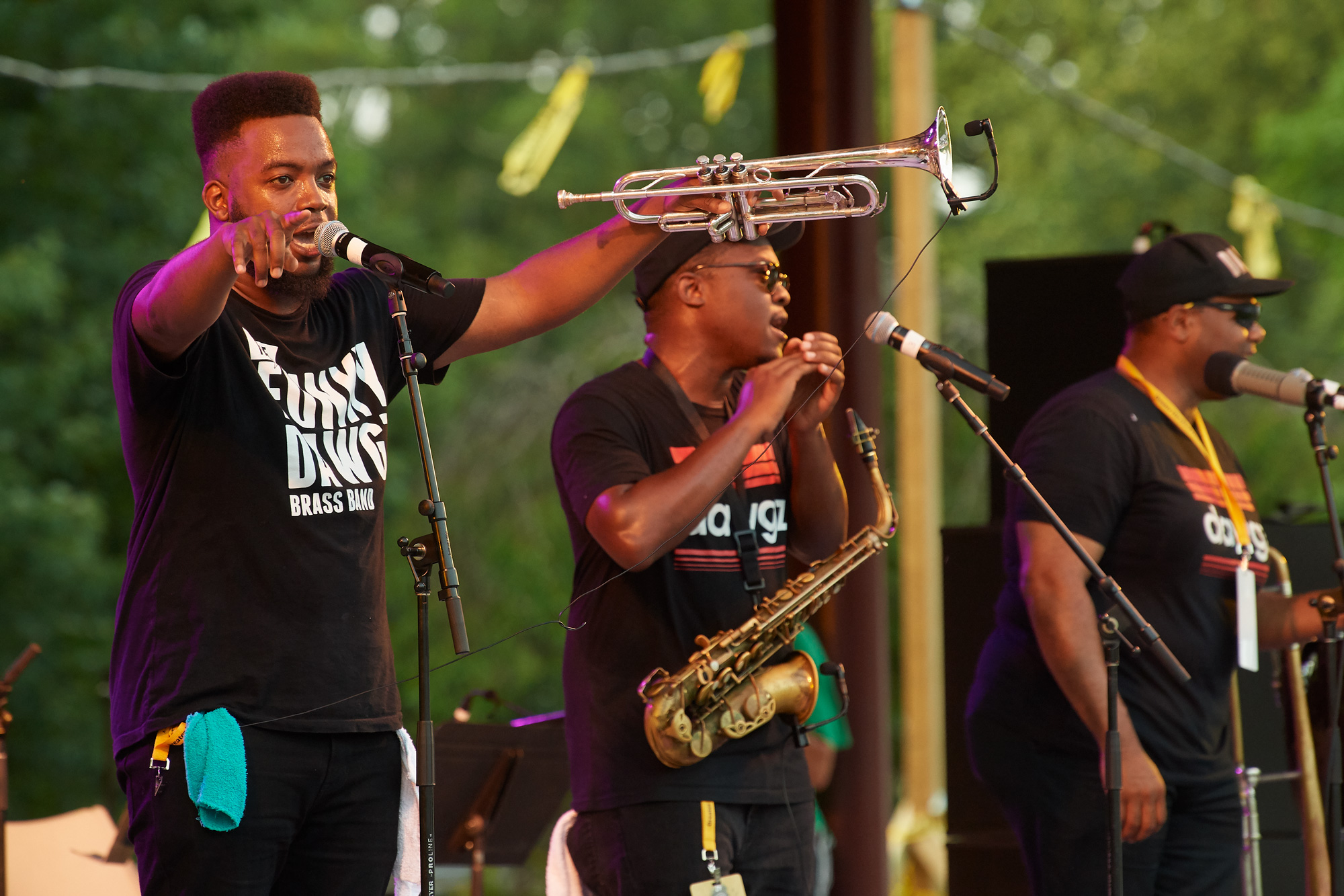 Funky Dawgz At Hartford Jazzfest this summer