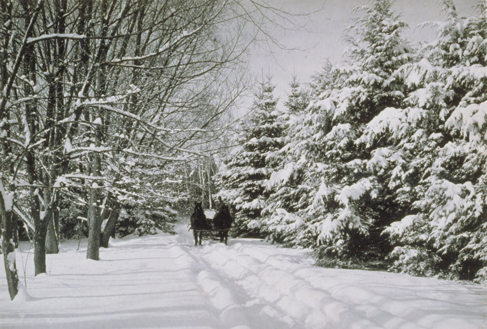 In 1920, a team of horses pulls a sled over snow-covered Willowbrook Road, which was a main campus entrance at the time.