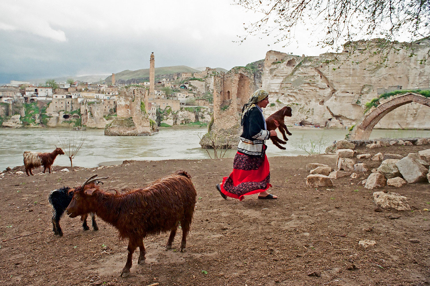 Kurdish woman tending her flock in Hasankeyf, Turkey, 2004.