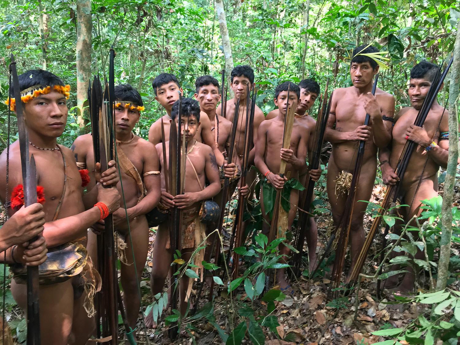 Group of young Awa men with their hunting bows and arrows in Juriti, Awá Indigenous Territory, Brazil, 2017.