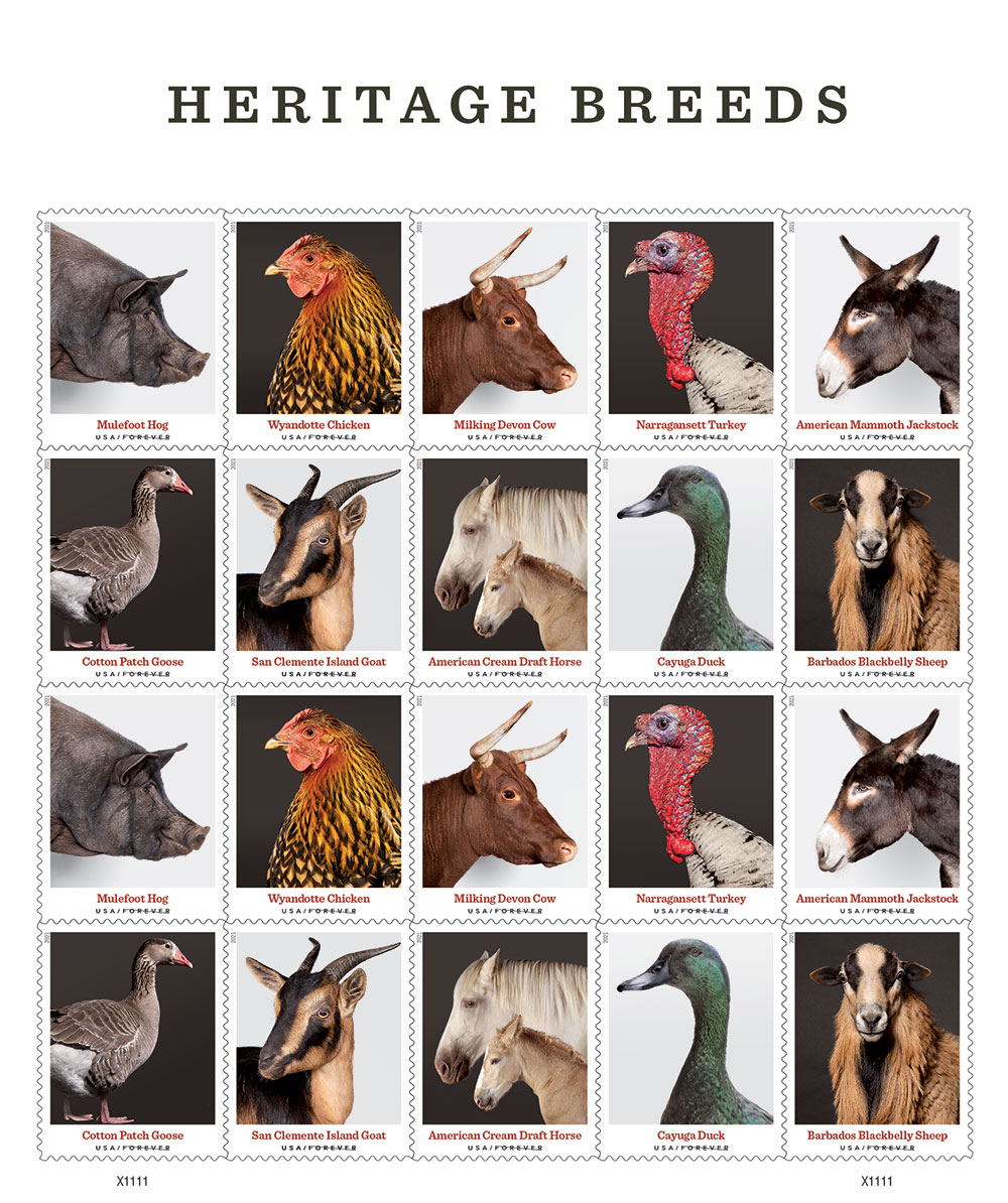 stamps of pigs, geese, chicken, and other farm animals