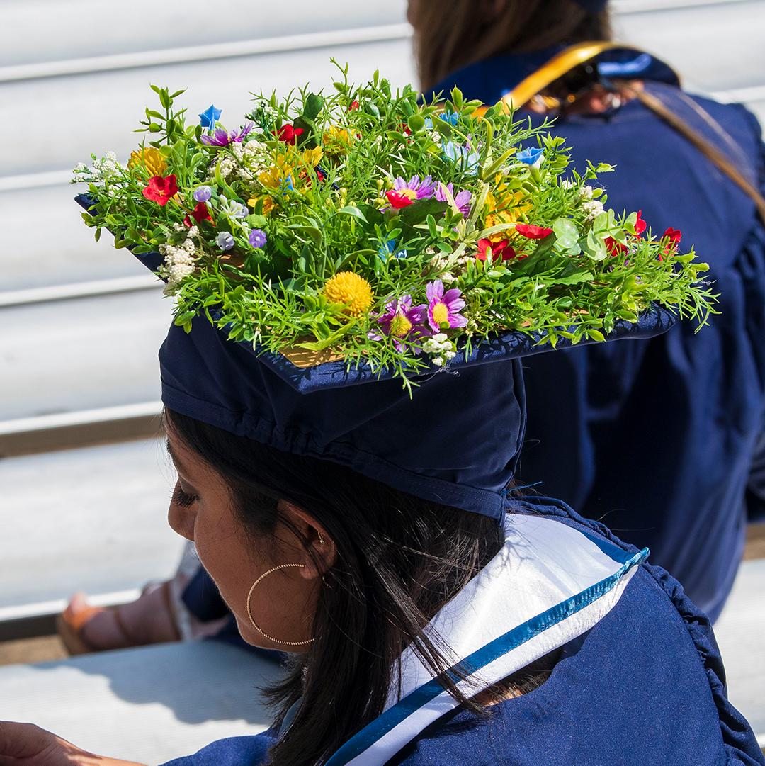 decorative grad cap with garden plants