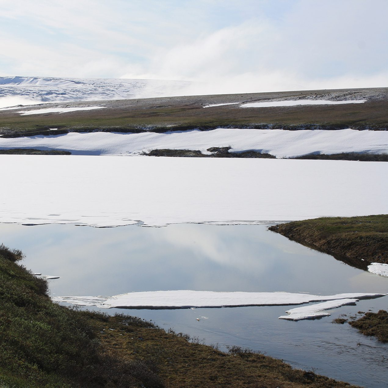 The disappearing snowpack that greeted researchers in Alaska last spring.